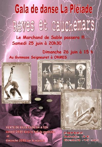 Affiche gala 2011